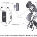 Hydraulic Compound Relief Valve